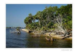 Kayaking to Cedar Key Atsena Otie Key; photo by Paul Lannuier