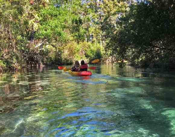 The Weeki Wachee is a fairly narrow stream, at most places about as wide as two lanes on the highway, making it a more intimate experience than many springs. (Photo: Bonnie Gross)