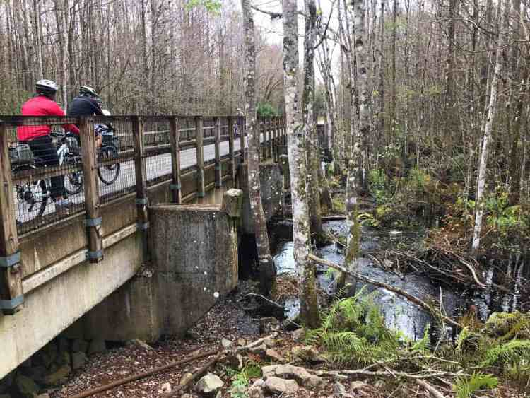 The highlights of our ride on the Van Fleet Trail were the three bridges over the Withlacoochee River, which are between miles 10 and 12. (Photo: Bonnie Gross)