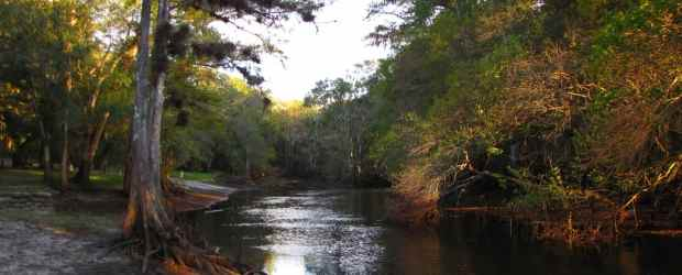 Withlacoochee River by B A Bowen Photography via Flickr