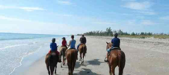 Beach horseback riding in Florida: Where to check this off your bucket list
