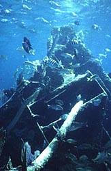 Mandalay Shipwreck Biscayne National Park