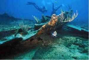 Divers on Mandalay shipwreck at Biscayne National Park