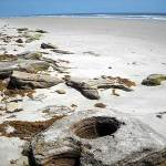 Water has created fanciful swirls in the coquina rocks at the beach