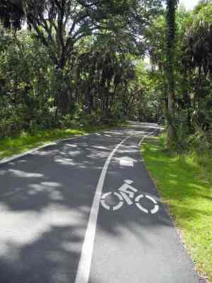 Loop drive at Highlands Hammock State Park