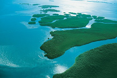 Paradise Found: Things to do in the Lower Keys