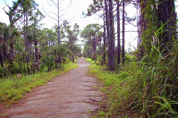 Jonathan Dickinson State Park bicycle trail