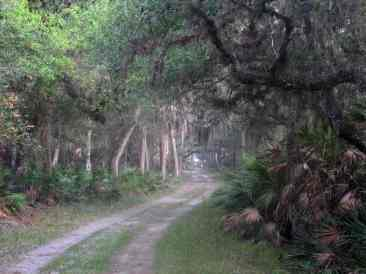 Ranch House Road at Myakka River State Park