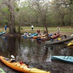 Paddle Florida: 2017-18 kayak trips explore Florida's top waterways