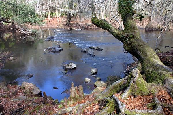 santa fe river at o'leno river state park