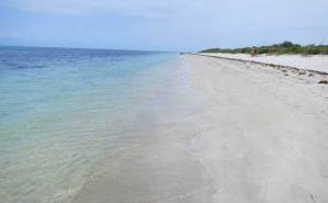 Beach at Cape Florida State Park on Key Biscayne