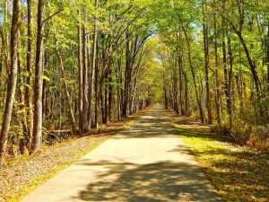 Jacksonville-Baldwin Bike Trail