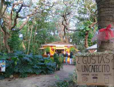 •The Latin Corner is a colorful little yellow hut under the trees that serves Cuban coffee, sandwiches, and juices enjoyed at open-air tables.
