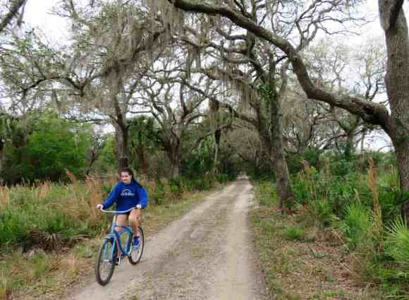 Ranch House Road travels through a beautiful canopy of live oaks and can be ridden on skinny-tire bikes.