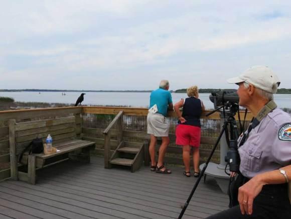 Birding experts help visitors see and identify birds at a platform on Upper Myakka Lake.