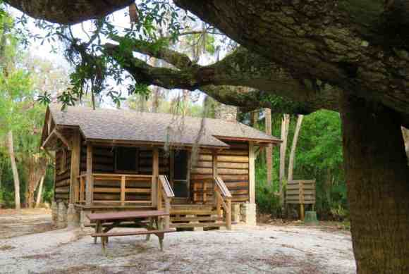 The logs on the cabins in Myakka River State Park are the trunks of palm trees.