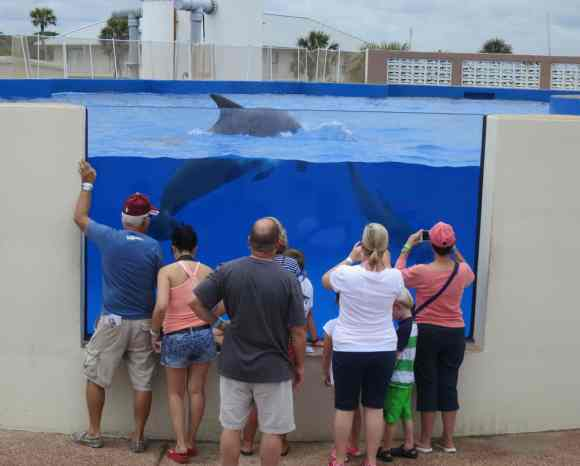 Marineland, between St. Augustine and Flagler Beach. (Photo: Bonnie Gross)