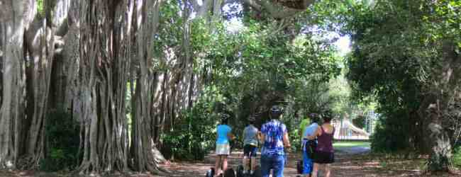 Hugh Taylor Birch State Park in Fort Lauderdale. (Photo: Bonnie Gross)