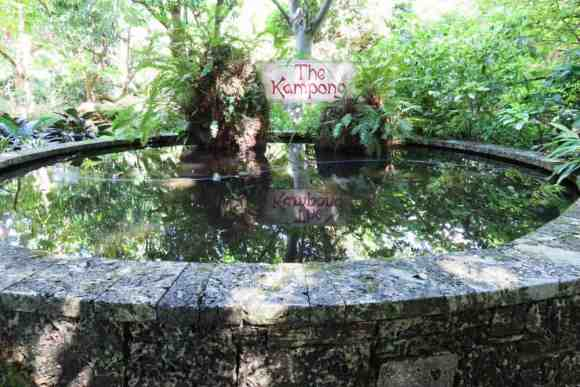 Pond at the Kampong Coconut Grove. (Photo: Bonnie Gross)
