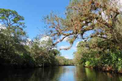 St. Lucie River South Fork