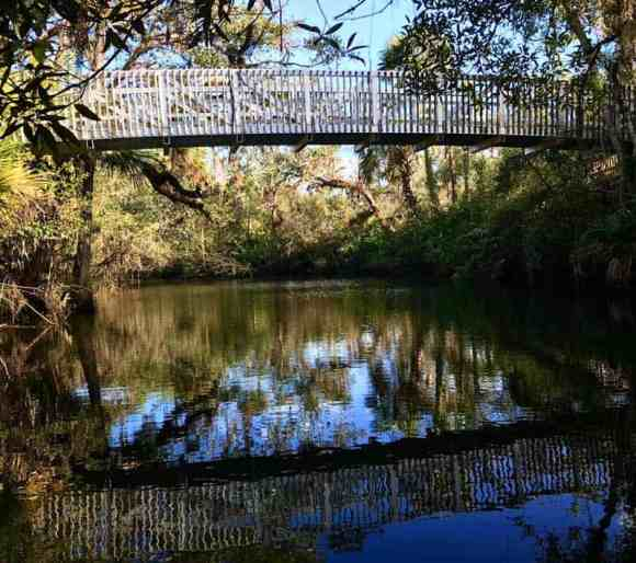 Bridge at Hickey's Creek Mitigation Park. (Photo: Bonnie Gross)