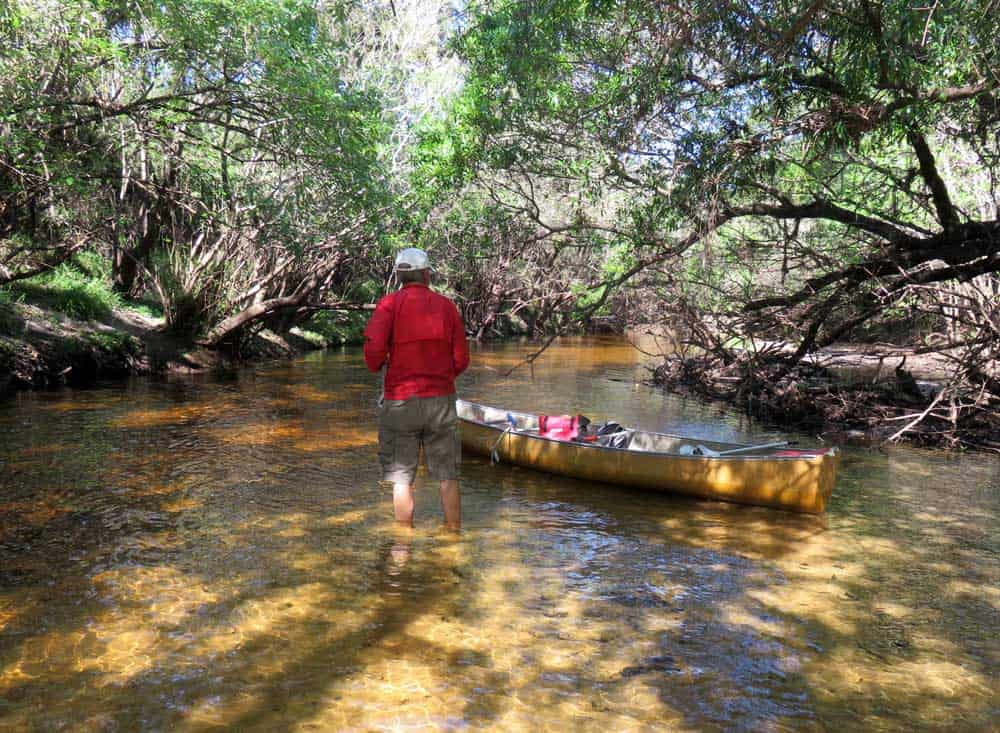 Little Manatee River: ...