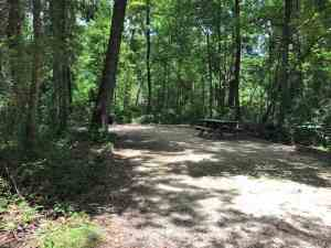 Typical campsite at O'Leno State Park, High Springs