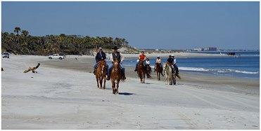 beach ride on amelia island