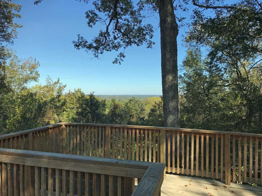 Campground observation deck at Torreya State Park