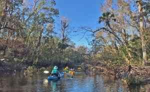 Wekiva River near Katie's Landing.