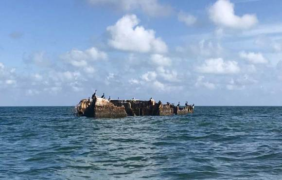 The sunken concrete barge at Garden Cove in Key Largo. (Photo: Bonnie Gross)