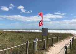 warning flags for swimmer at Avalon Beach State Park