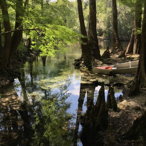 My favorite spot along the Santa Fe River was this small unnamed spring near Rum Island (Photo: Bonnie Gross)