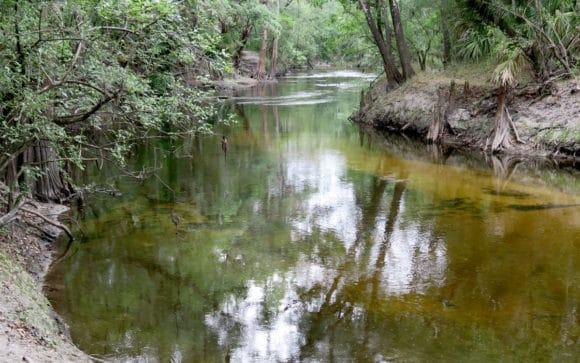 Alafia River at Alderman's Ford Park