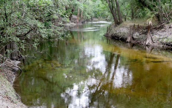 Alafia River at Alderman's Ford Park