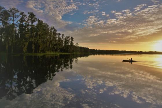 Sunrise Paddle at Lake Louisa State Park