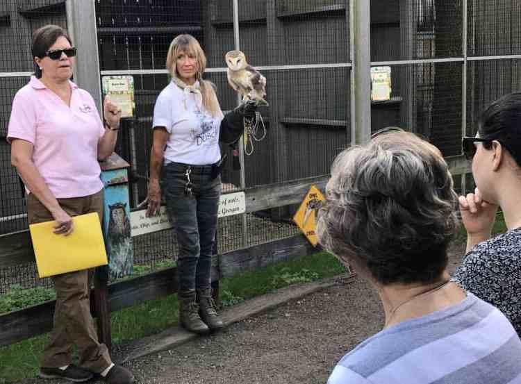 Owl program at Busch Wildlife Sanctuary in Jupiter. (Photo: Bonnie Gross)