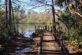 """One hiking trail in Fakahatchee Strand takes you to this spot -- the boardwalk next to the """"Fakahatchee Hilton."""" (Photo: Bonnie Gross)"""