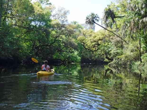 Kathy paddles the Hillsboro River