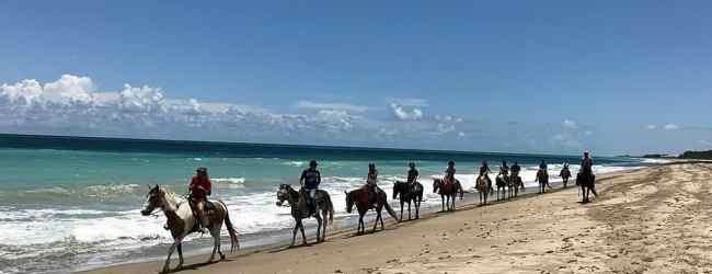 Horse riders return to Frederick Douglass Park. (Photo by Bob Rountree)