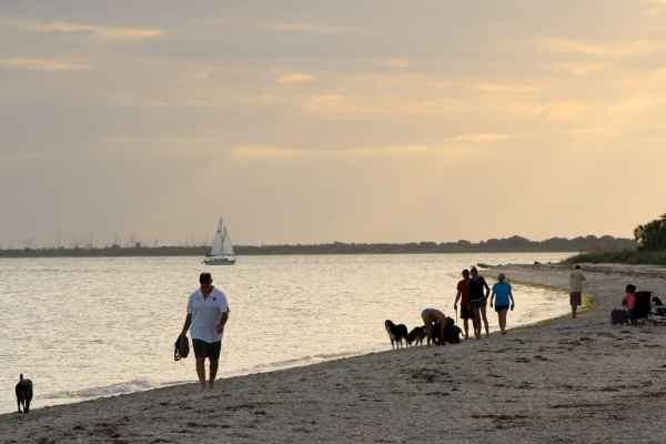 Fort Desoto Dog Beach