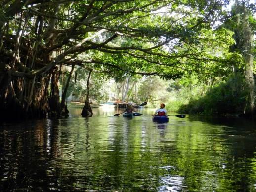 Imperial River kayak trip, Bonita Springs