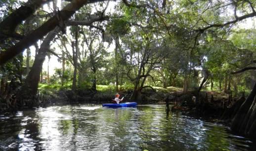 Kayaking Imperial River