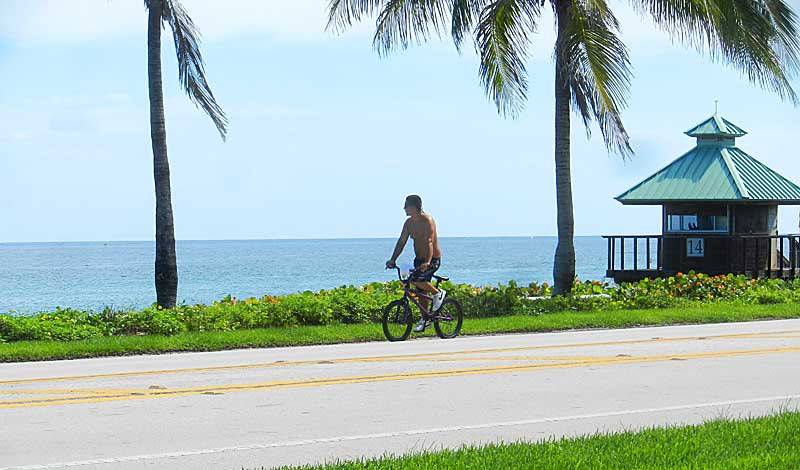 Florida bike trails: Our favorites in South Florida and statewide