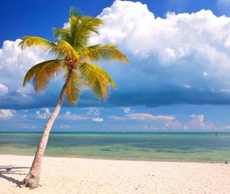 Florida Keys beach