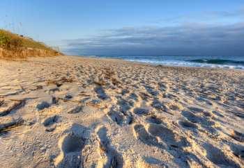 Apollo Beach at Canaveral National Seashore.