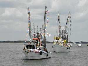 shrimp boat parade isle of eight flags shrimp festival