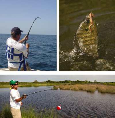 fishing-montage