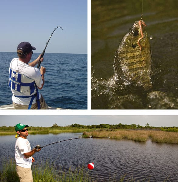 Try fishing: Here are 2019 license-free fishing days in