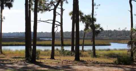 Florida 'low country' found at Faver-Dykes State Park